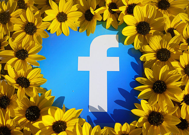 Facebook sunflowers