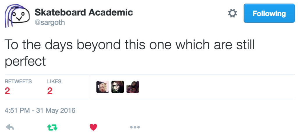 """To the days beyond this one which are still perfect"" — the infamous Skateboard Academic on Twitter."