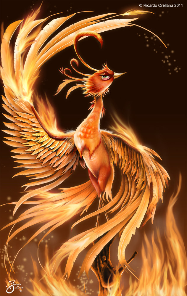 Phoenix illustration by Ricardo Orellana.